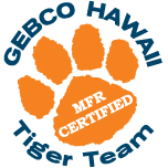 GEBCO-Tiger-Team